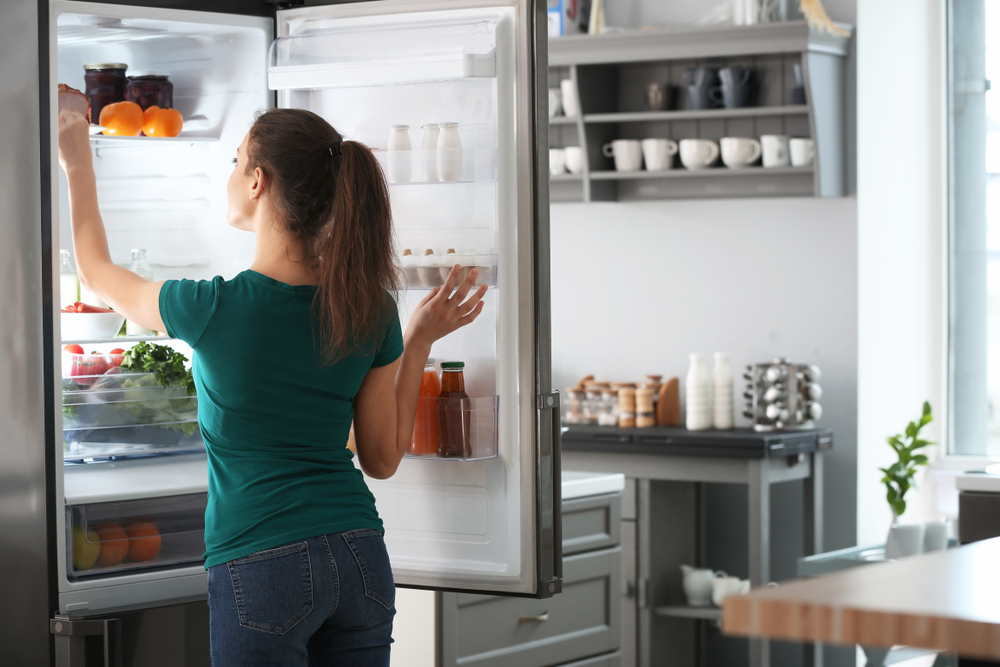 frigo 1 porte avec distributeur de